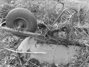 Black and White Wheelbarrow