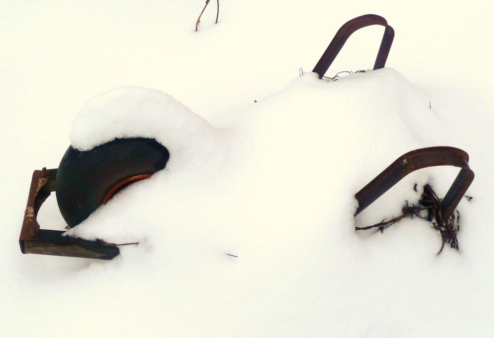 Snowy Wheelbarrow
